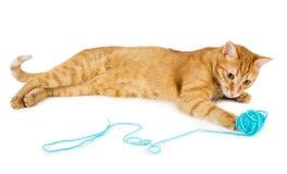 Boule rouge de laine de woth de chat Photographie stock libre de droits