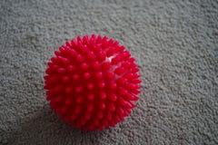 Boule rouge de massage avec des transitoires image stock