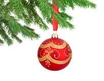 Boule rouge de Noël de décorations accrochant sur une branche d'arbre de sapin Photos stock