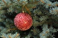Boule rouge de Noël sur l'arbre de Noël photographie stock libre de droits