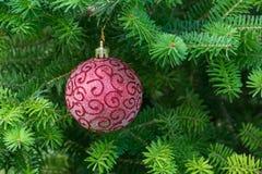 Boule rouge de Noël sur l'arbre de Noël photo libre de droits