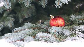 Boule rouge de Noël sur la branche de sapin couverte de neige banque de vidéos