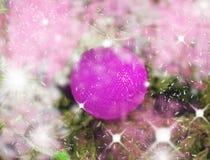Boule rougeoyante de lilla rose des fils images libres de droits