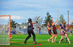 Boule sauvage de filles de lacrosse Photographie stock libre de droits