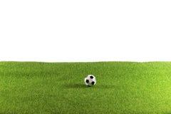Boule sur le champ d'herbe énorme Photographie stock libre de droits