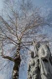 Bouleau et le monument Image stock