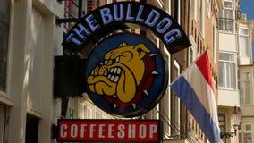 Bouledogue Coffeeshop sur le canal de Singel à Amsterdam banque de vidéos