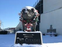 Bouledogue de citadelle couvert dans la neige Image libre de droits