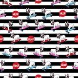 Bouledogue français sur le modèle sans couture de planche à roulettes Photographie stock