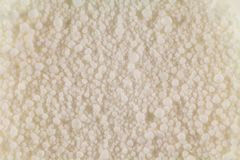 Boules blanches de fin d'origine organique dans la photo entière photos stock