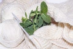 Boules de fil Aiguilles de Knit Photographie stock libre de droits
