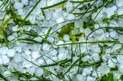 Boules de glace de grêle dans l'herbe Photographie stock libre de droits