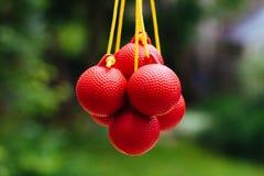 Boules de golf de lasso suspendues par leurs cordes images libres de droits