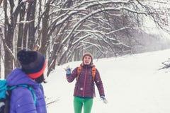 Boules de neige de jeu d'amis Images stock