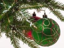 Boules de Noël sur une branche Photographie stock libre de droits