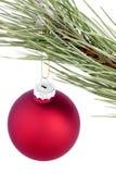 Boules de Noël sur une branche d'arbre Photos libres de droits