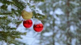 Boules de Noël sur l'arbre dans la forêt et les chutes de neige banque de vidéos