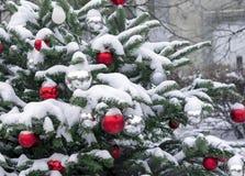 Boules rouges et blanches sur un arbre de Noël couvert de neige Décorations nouvelle année, Noël photo libre de droits