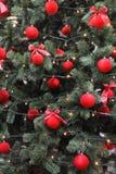 Boules rouges sur un arbre de Noël vert Photo libre de droits