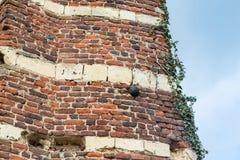 Boulet de canon dans un mur médiéval Image libre de droits