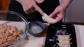 Boulettes chinoises de porc clips vidéos