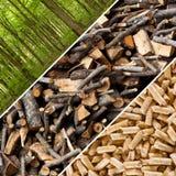Boulettes en bois Photo libre de droits