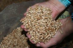 Boulettes en bois Image libre de droits