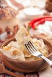 Boulettes ukrainiennes avec le chou cuit Photo stock