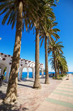 Boulevar with palm trees in Nerja, Malaga, Spain. Stock Images