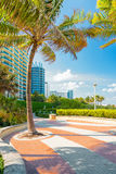 Boulevard à côté du rivage chez Miami Beach Photos stock