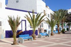 Boulevard benches palm trees white houses, Fuerteventura Stock Photography