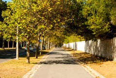 Boulevard from Carcavelos station to the beach Royalty Free Stock Photos