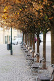 Boulevard in a center of Prague Stock Images