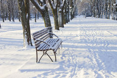 Boulevard in the city in the morning after a snowfall Royalty Free Stock Images