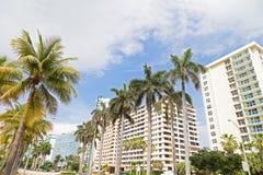 Boulevard con le palme alte e le costruzioni moderne in Miami Beach, Florida Fotografie Stock Libere da Diritti