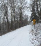 Boulevard della bufera di neve Immagine Stock Libera da Diritti