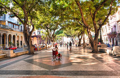 The boulevard of El Prado in Old Havana Stock Images