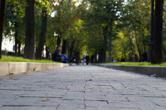 Boulevard. The image of a boulevard Royalty Free Stock Photo