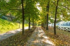 Boulevard le long du fleuve Pô, Turin Photographie stock