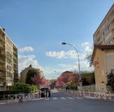 Boulevard mit Kirschblütenbäumen lizenzfreie stockbilder