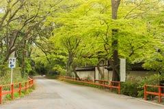Boulevard near Shimogamo Shrine Stock Photo