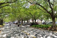 Boulevard nel campus universitario di xiamen, adobe rgb Fotografie Stock Libere da Diritti