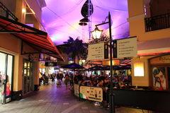 Boulevard summer night under canopy Stock Photography