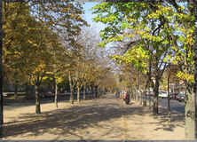 Boulevard. Of Shevchenko in city Cherkasy in autumn Royalty Free Stock Image