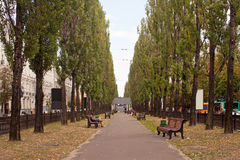 Boulevard Of Taras Shevchenko Stock Photography