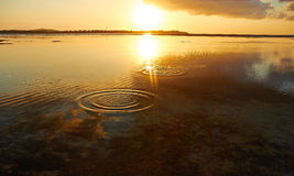 Bouncing stones into the sunset Stock Images