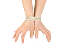 Bound hands Royalty Free Stock Photo