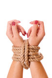 Bound hands. Isolated on white background royalty free stock image