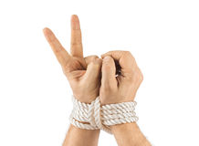 Bound hands and victory sign Royalty Free Stock Photography