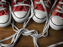 Bound for life. Pair of sneakers with laces bound together Stock Photos